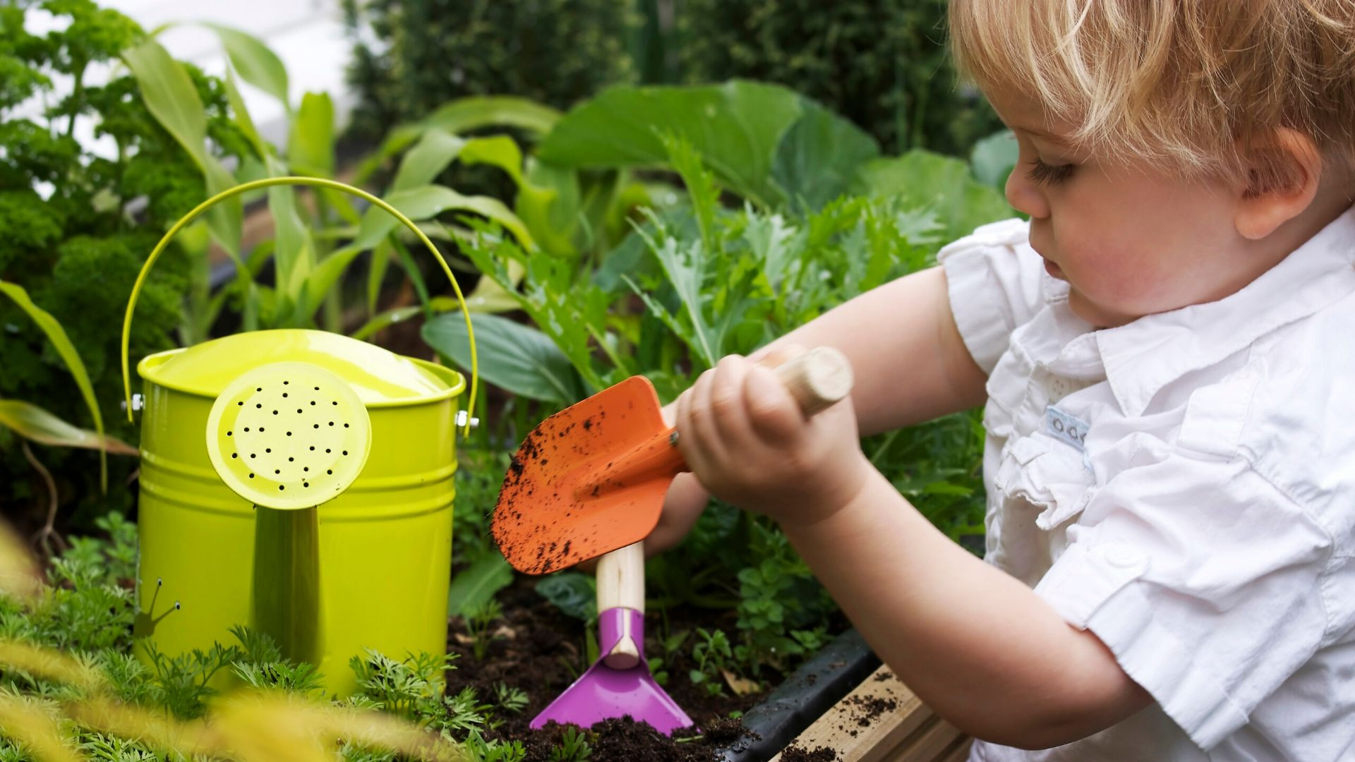 Ten Steps to Start Your Own At-Home Garden